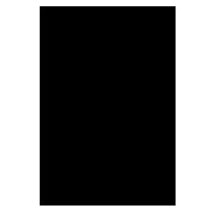 انواع کالسکه